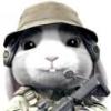 请列举SV OOP编程中参数化类的一些典型应用场景是什么